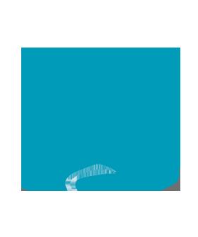 Logo elektropruefung guru